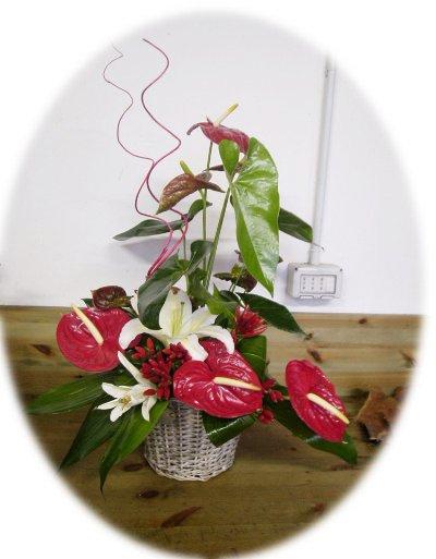 Composizioni fiori freschi tm49 regardsdefemmes for Case di tronchi freschi
